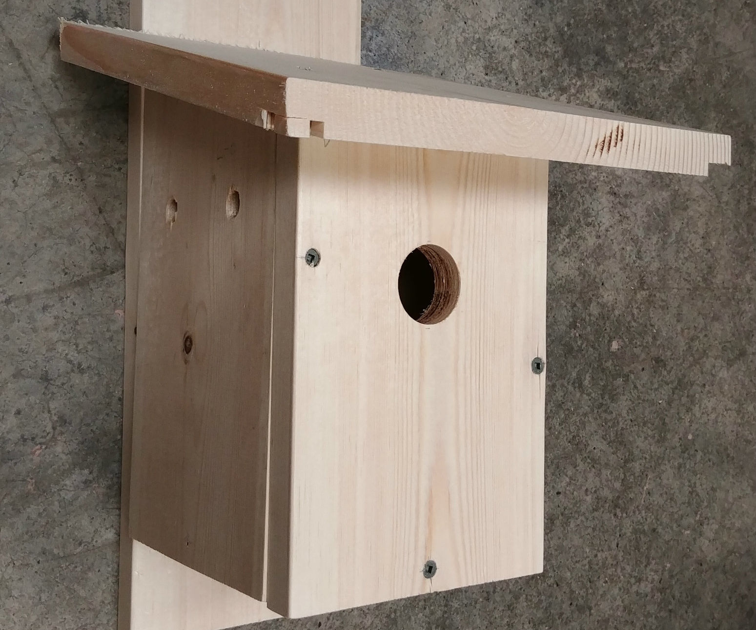 How to Make a Nest Box for Birds