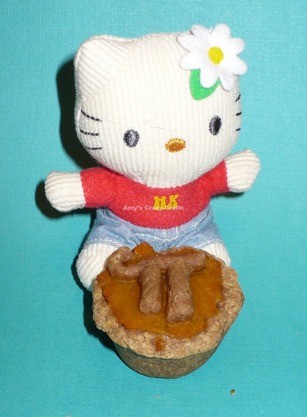 Pi Pie for Your Pets