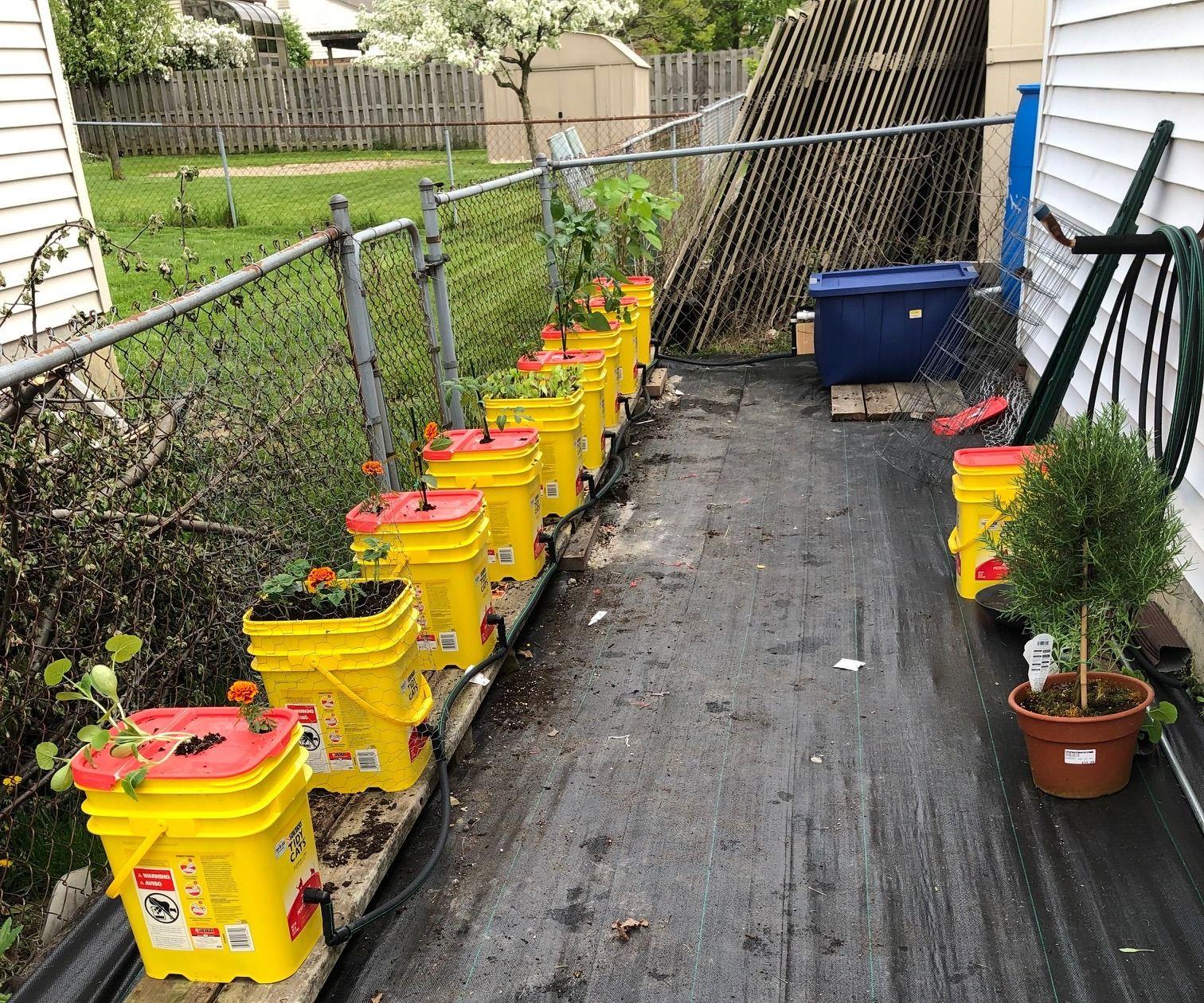 Self-wicking Rain Water Container Garden