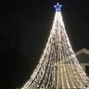 Flag Pole Mega Tree