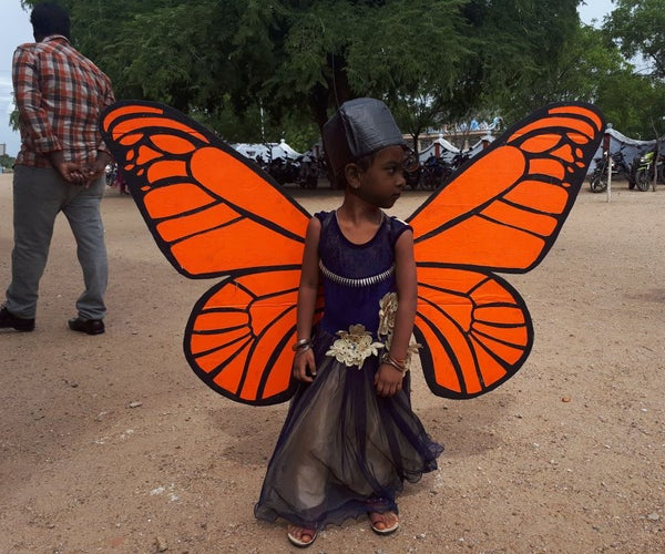 Full Size Butterfly for Fancydress