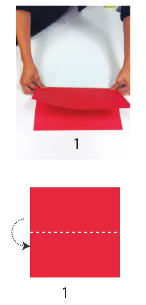 Fold the Paper