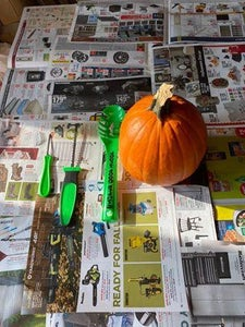 How to Pick the Perfect Pumpkin