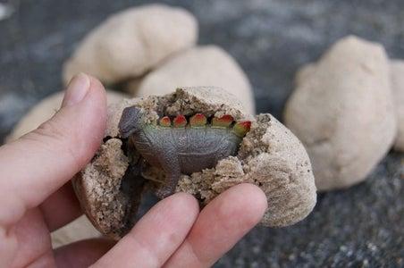 How to Make a Montessori-inspired Surprise Dinosaur Egg