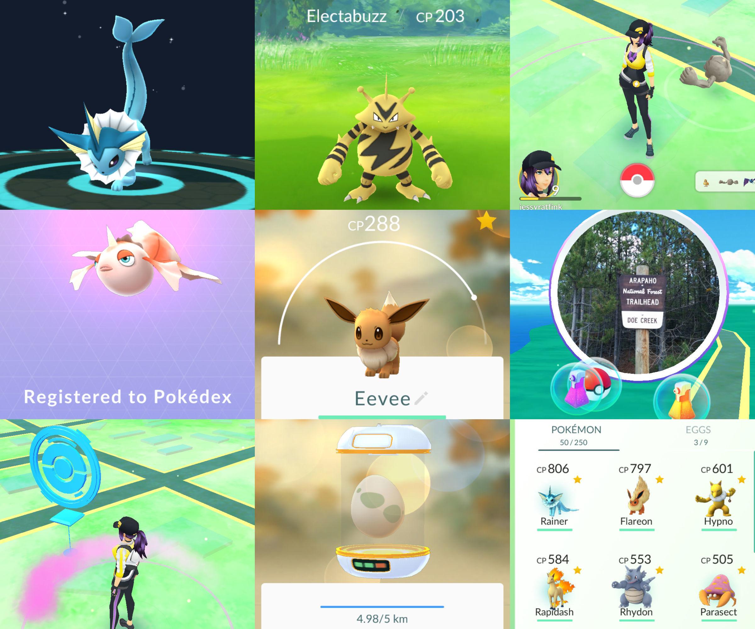 Pokemon Go Beginner's Guide