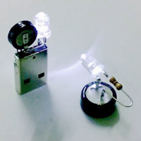 Supercapacitor USB Light