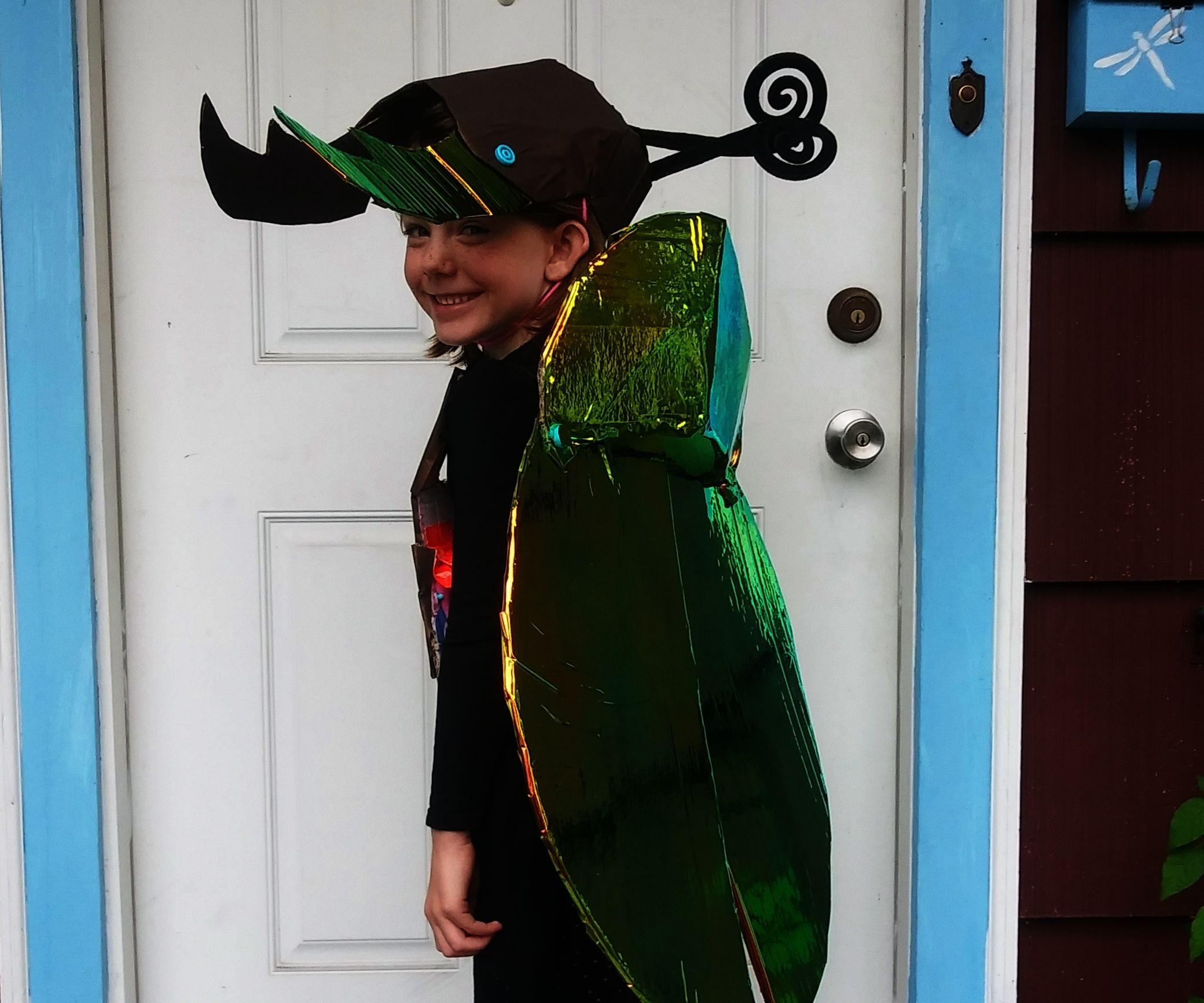 Cardboard Beetle Costume