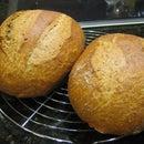 100% Whole Wheat Crusty No Knead Artisan Bread