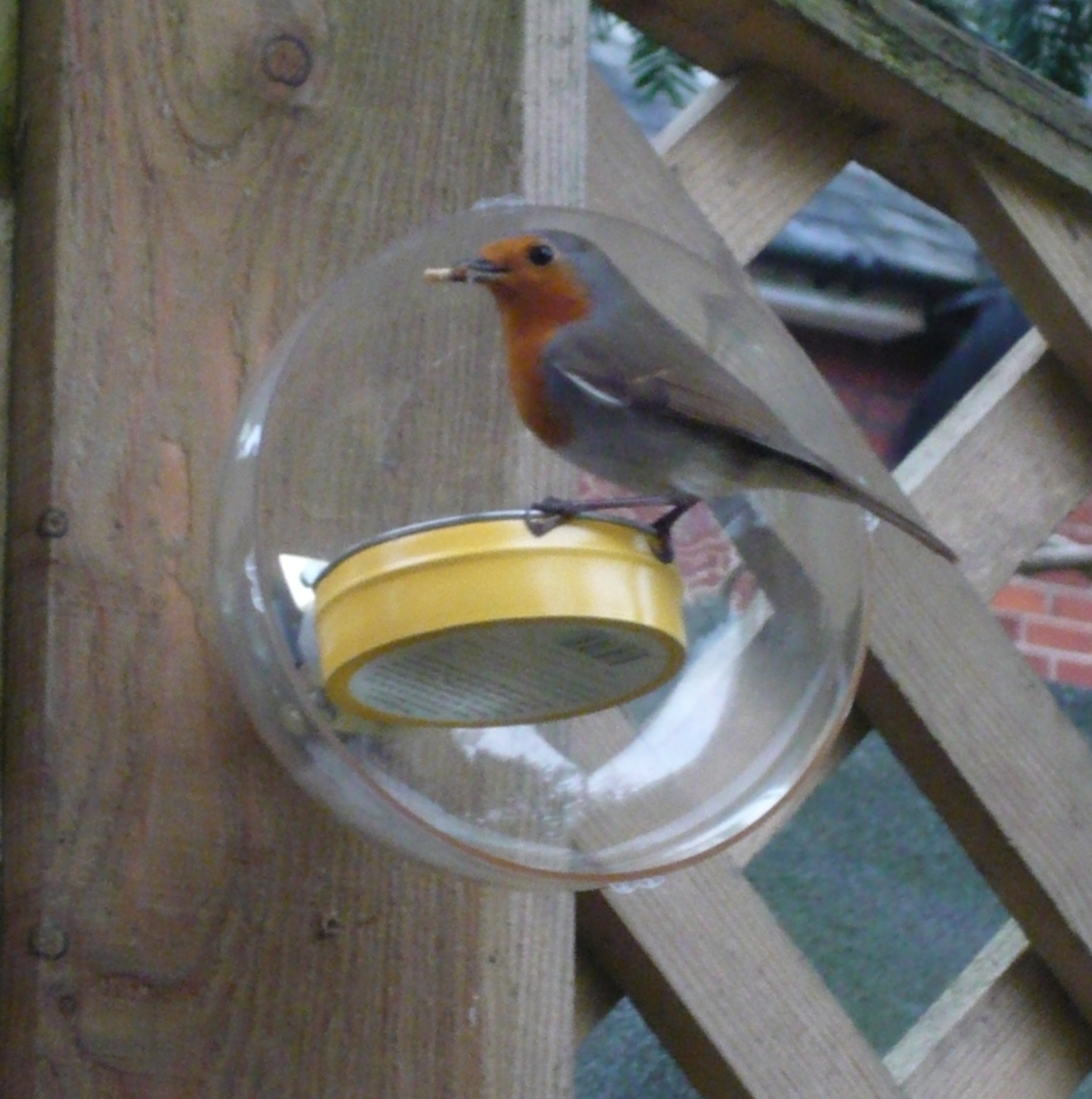 Small simple horizontally mounted squirrel resistant/proof bird feeder that requires no specialist tools to make