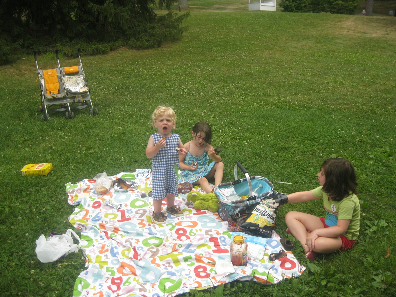 Pizza Picnic: Featuring the Super Solar Stroller Oven