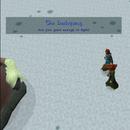 RuneScape Help