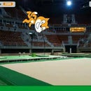 Scratch Olympic Floor Exercise With PocketLab
