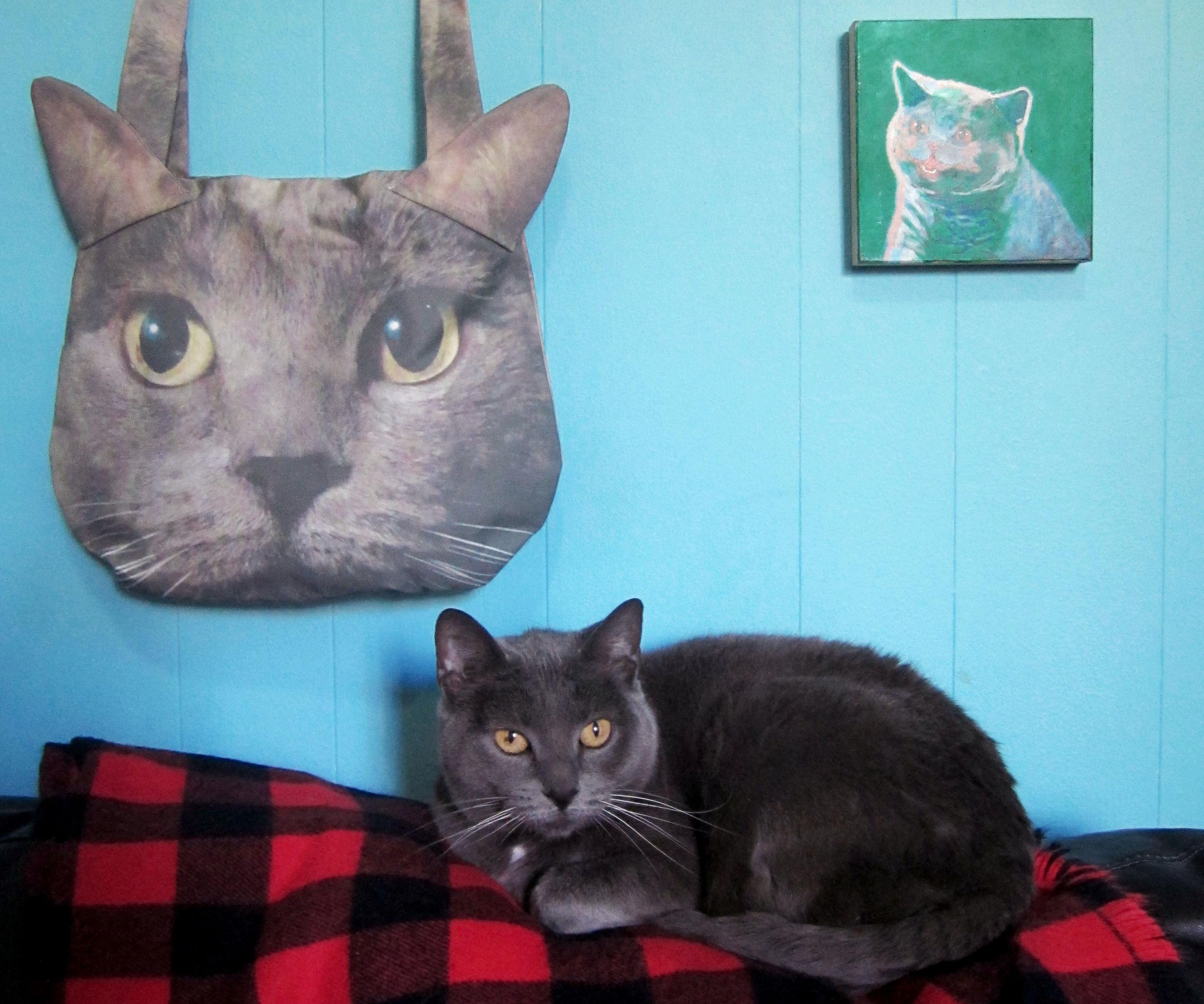 DIY Cat Purse Using Custom Photo