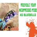 Nespresso Bluebells