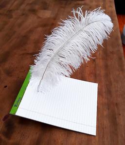 Magic Writing Quill