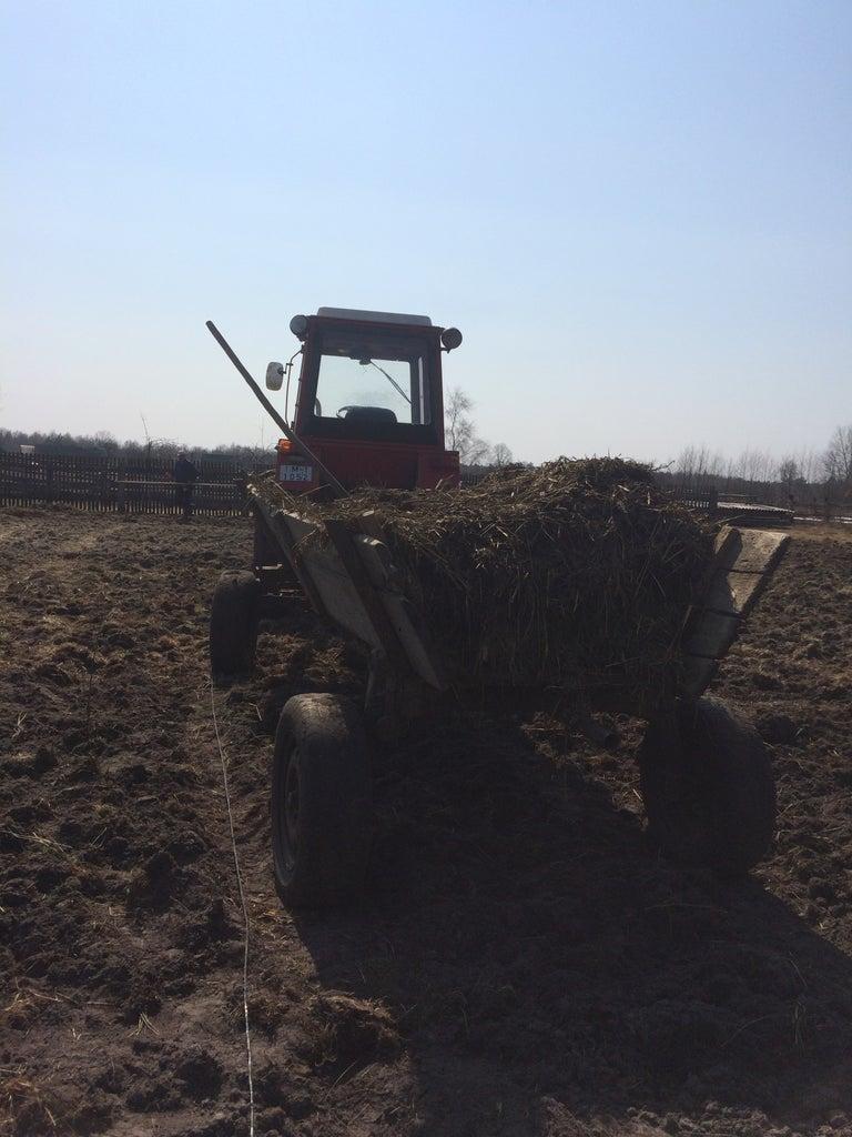 Soil and Fertilization