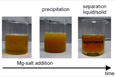 The Process of Hydrolysis & Precipitation