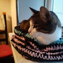 Cat Bed From Rags