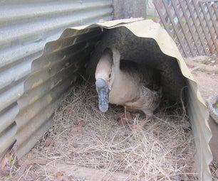 Duplex Goose Nest