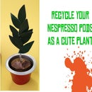 Nespresso Pod Pot Plant