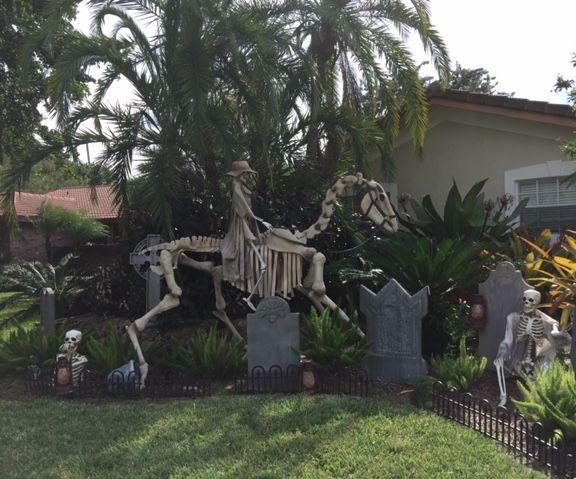 Skeleton Horse Halloween Display