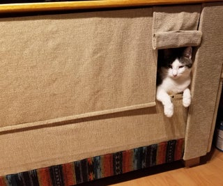 Couch Hack for Your Cat