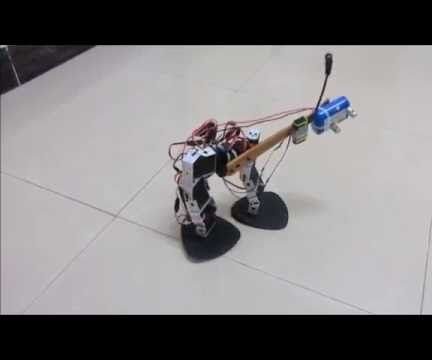 StriderBot - Bepedal Robot