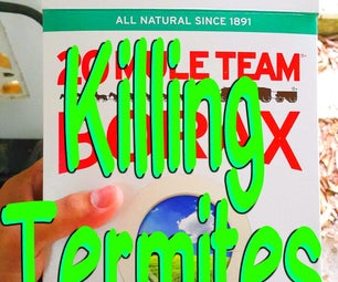 How to Kill Termites.