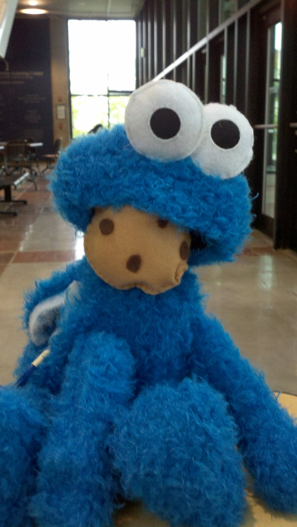 Interactive Cookie Monster Plush Toy