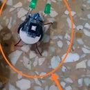 Bug Bot