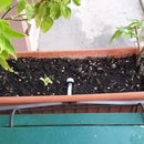 Battery-powered Irrigation for Balcony Plants
