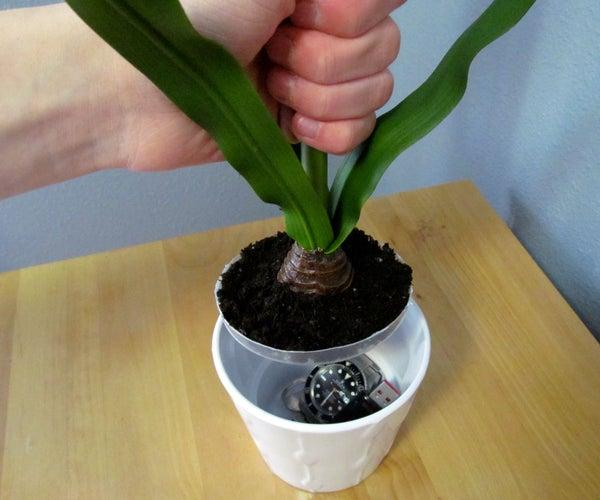 Potted Plant Secret Compartment
