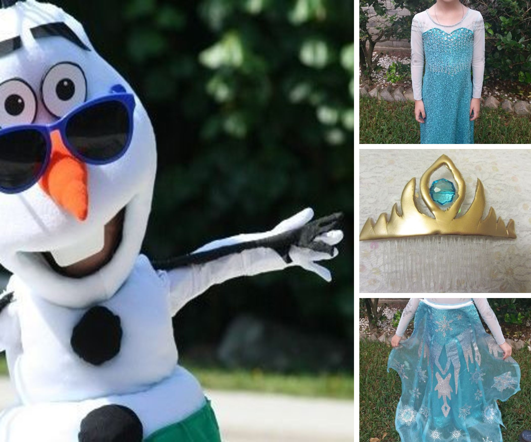 Frozen Costumes: Olaf, Elsa, Sven, and More