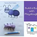 Build a Bug!