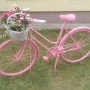 Bicycle Decoration