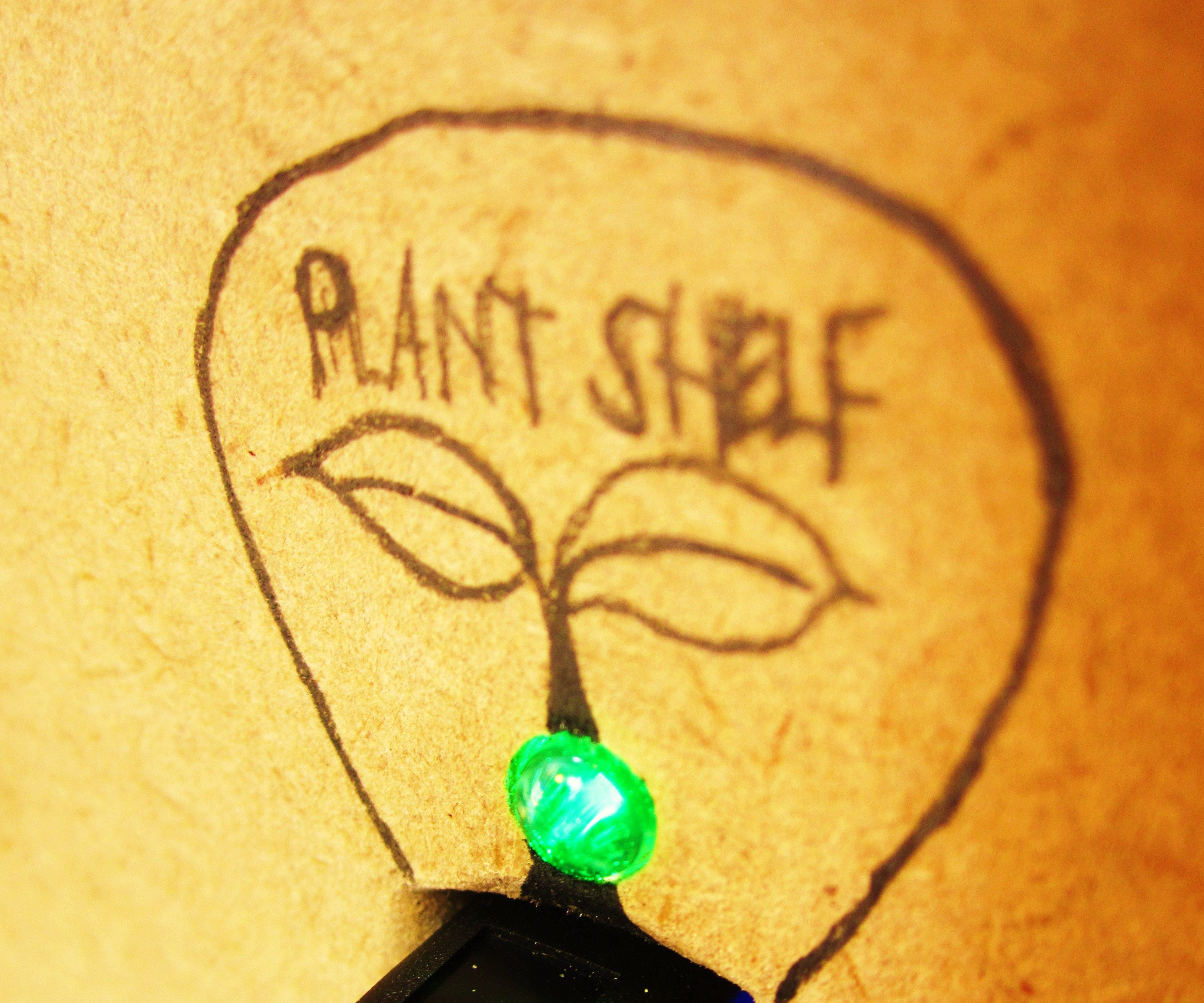 the Plant Shelf mini