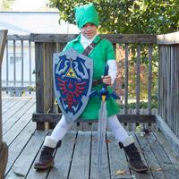 Kids Link Costume