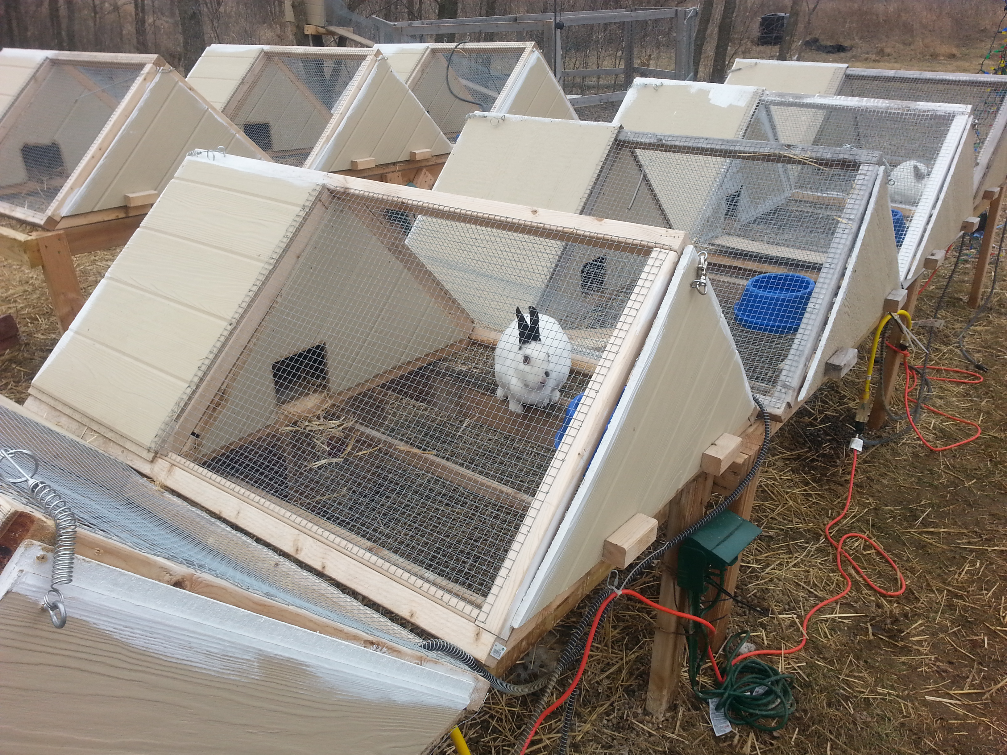 Super great A-frame rabbit hutch!