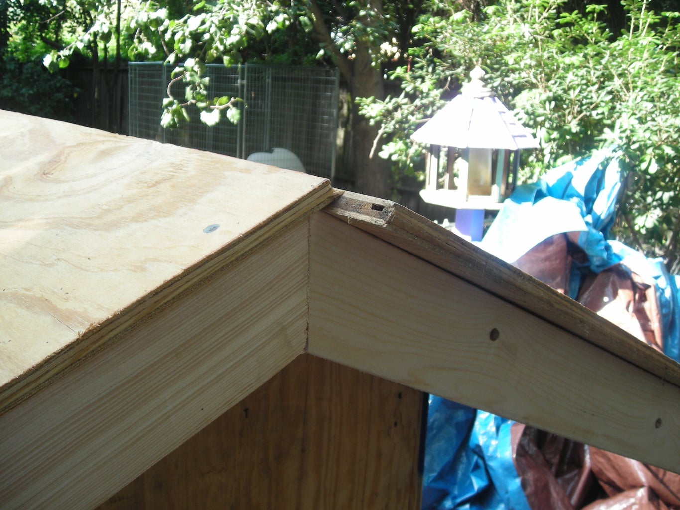 Roof Frame and Plywood