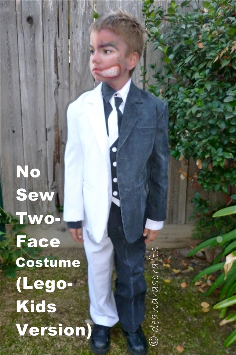 No-Sew Two-Face Costume (Lego Kids Version)