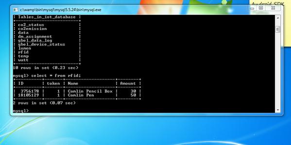 Setting Up MySQL