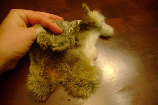 How to Tan Rabbit Hide (with Egg Yolk)