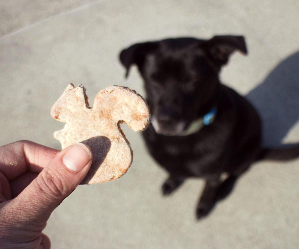 Gluten-Free Dog Treats