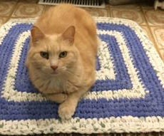 From Old Bedsheets to New Rugs