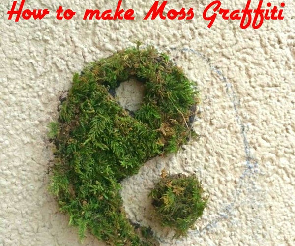 How to Make Moss Graffiti (%100 Working Method)