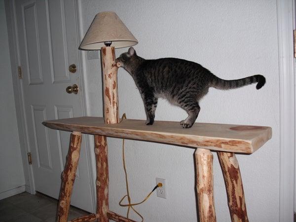 How to Build a Custom Pine Log Table