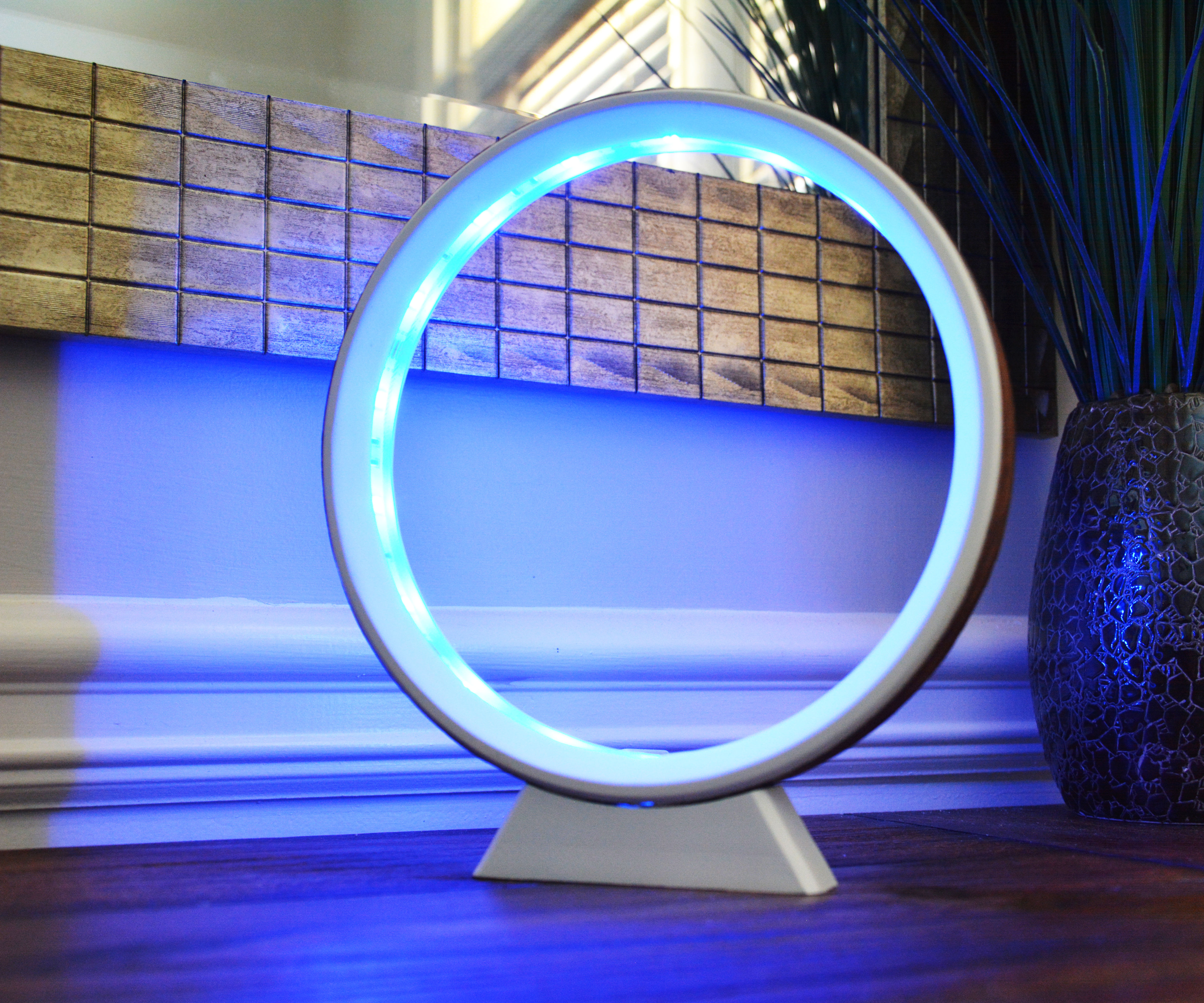 LED Ring Lamp