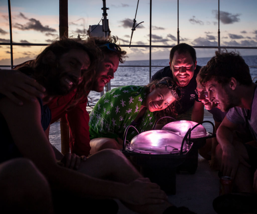 Solar-powered Lamp From Recycled Ocean Snare
