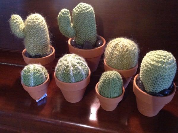 Plants That Don't Die