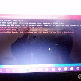temp_-155916080.jpg